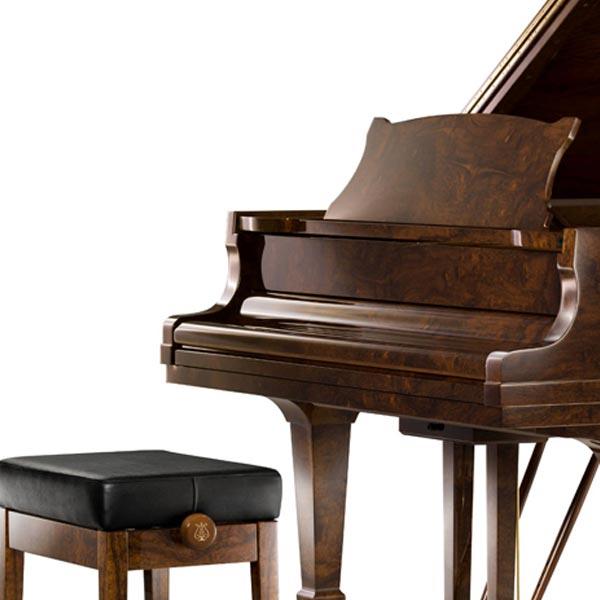 施坦威钢琴 莱茵河畔